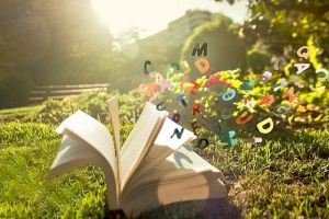 Open Book by Beatriz Pitarch